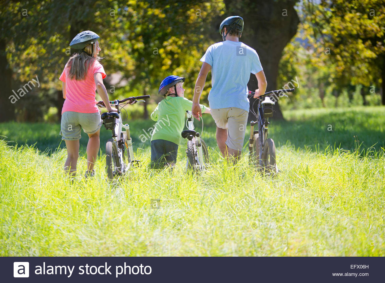 Family, pushing mountain bikes, in treelined field - Stock Image