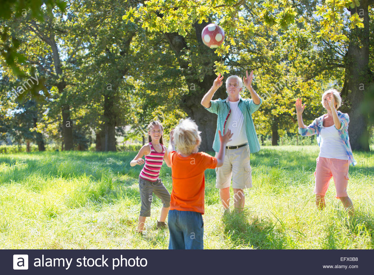 Multi generation family, playing catch, in treelined field - Stock Image