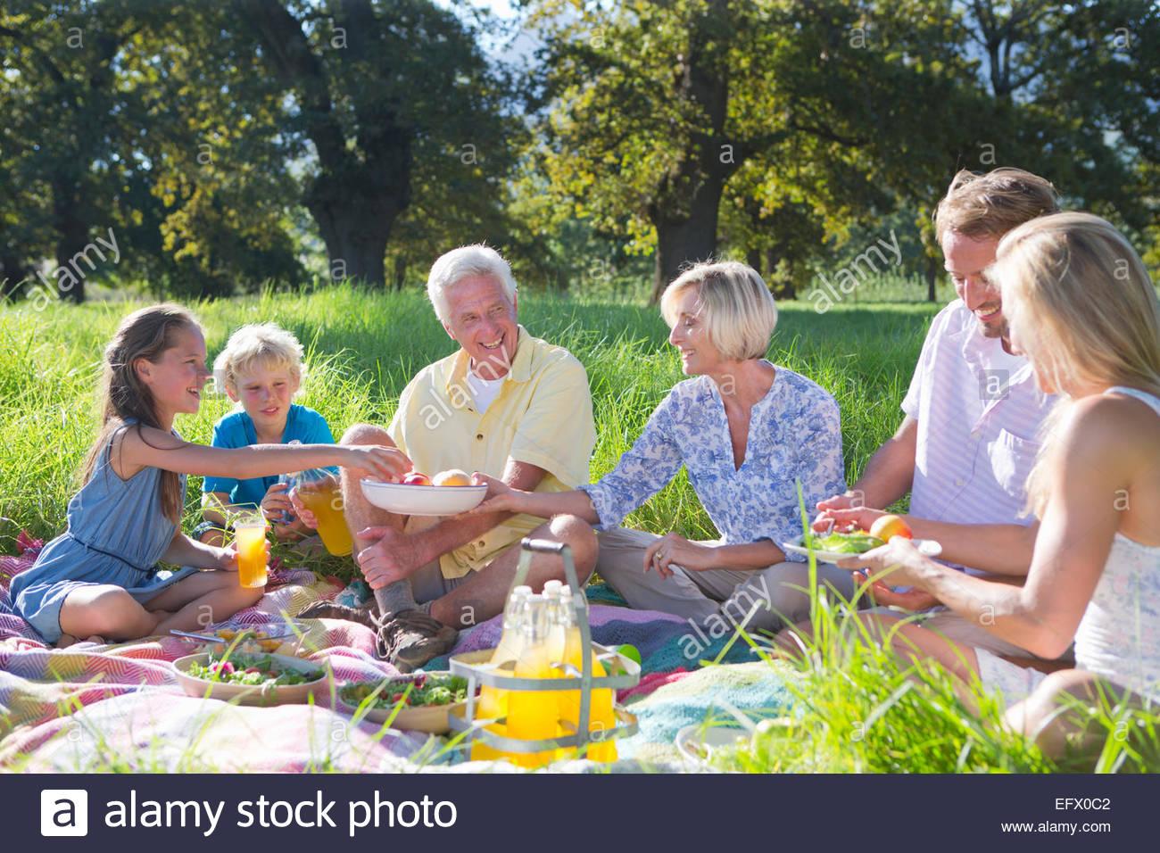 Multi generation having picnic in treelined field - Stock Image