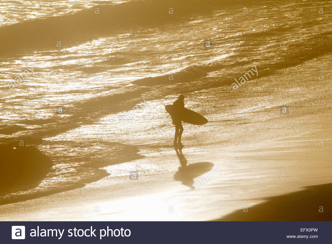 Man holding surfboard walking along beach through waves - Stock Image