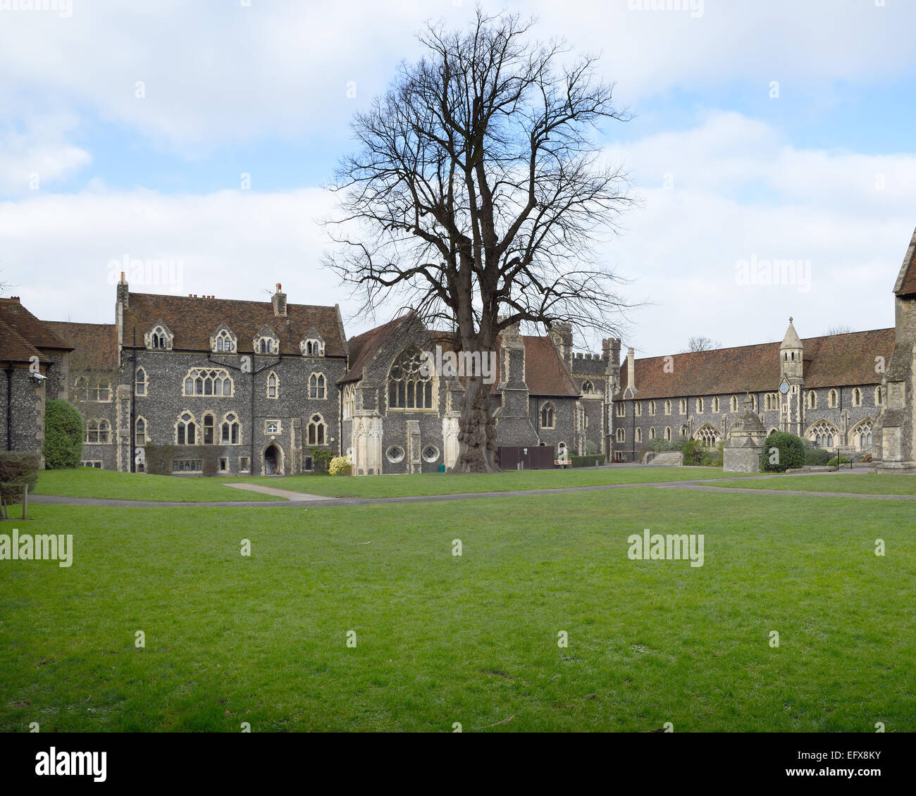 Part of the the Kings School, Canterbury, Kent, UK.  Viewed from St Augustine´s Abbey grounds - Stock Image
