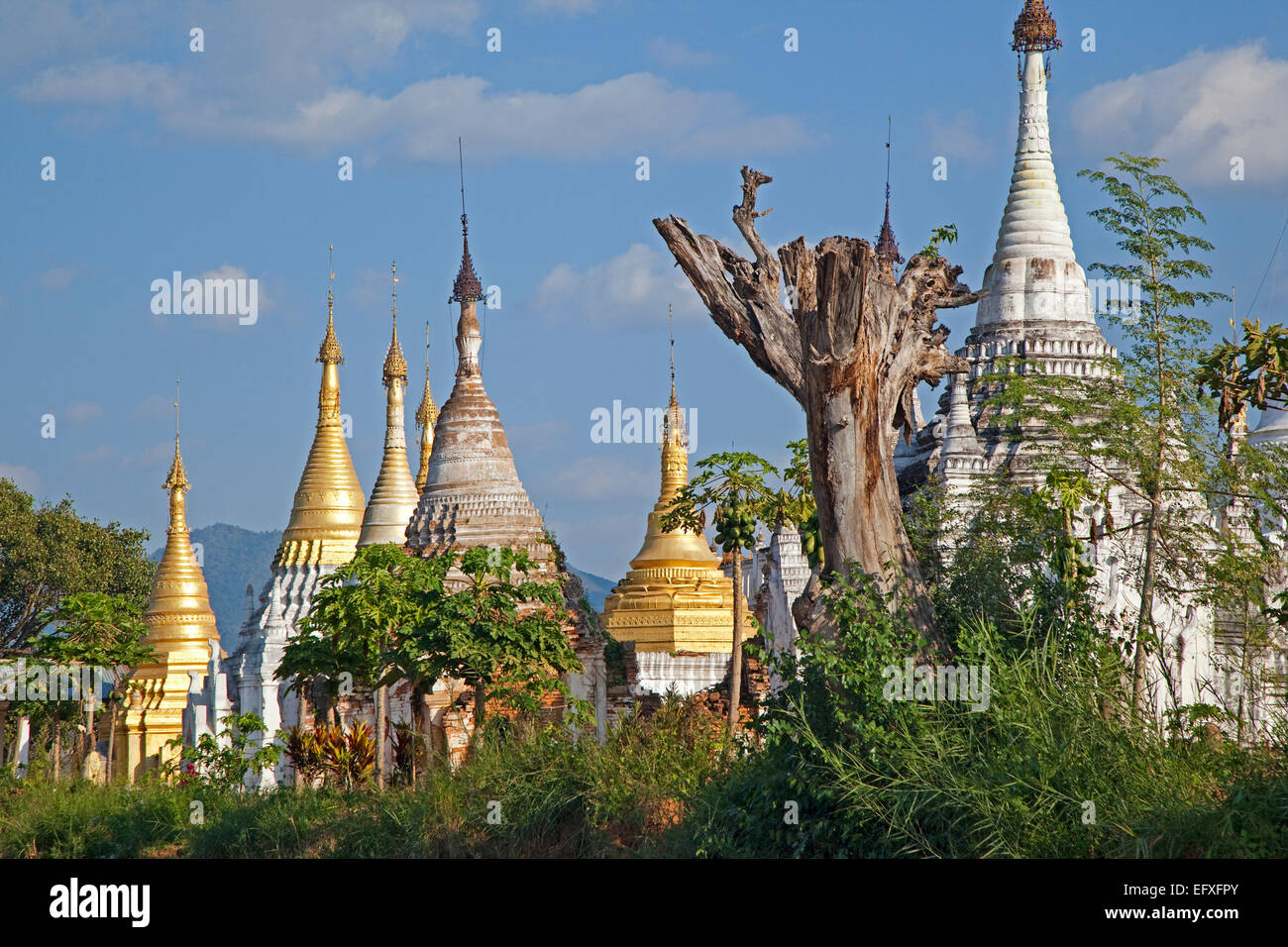 Golden and white Buddhist Stupas on the shore along Inle Lake, Nyaungshwe, Shan State, Myanmar / Burma - Stock Image