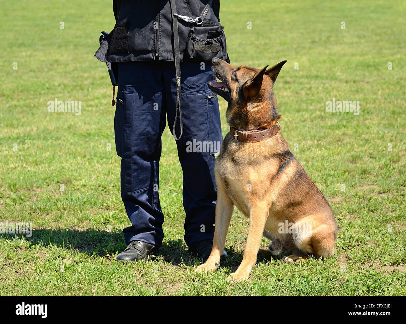 Police Dog Training Centre