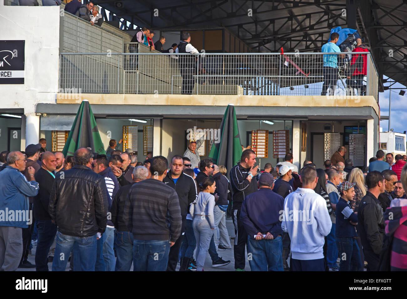 Bookmakers and punters at harness racing at Malta Racing Club, Marsa, Malta - Stock Image