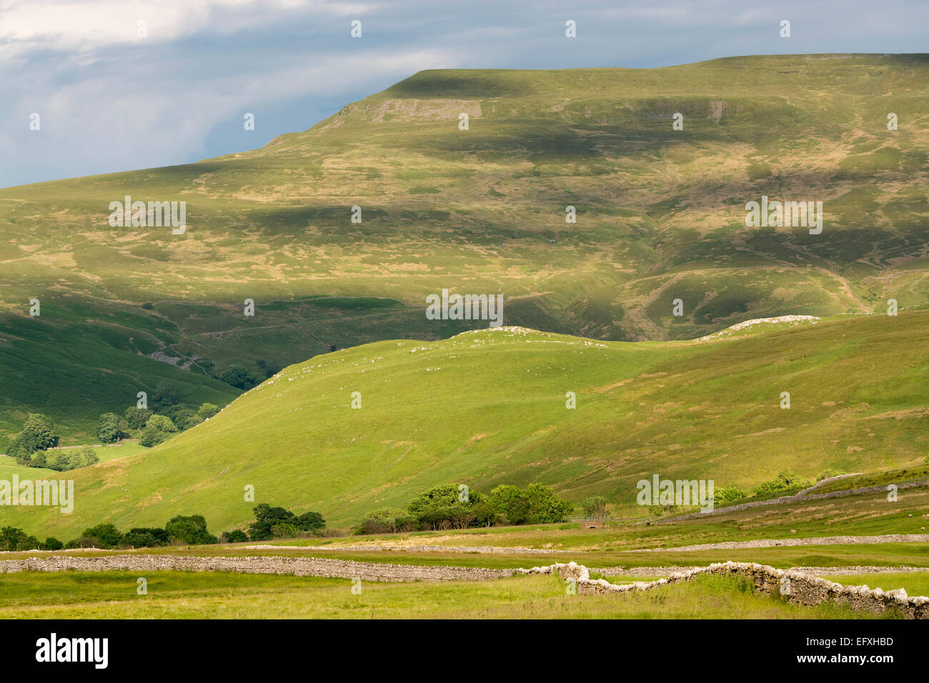Upland countryside in the Upper Eden near Kirkby Stephen, Cumbria, UK, showing Wharton Fell and Mallerstang Edge. Stock Photo