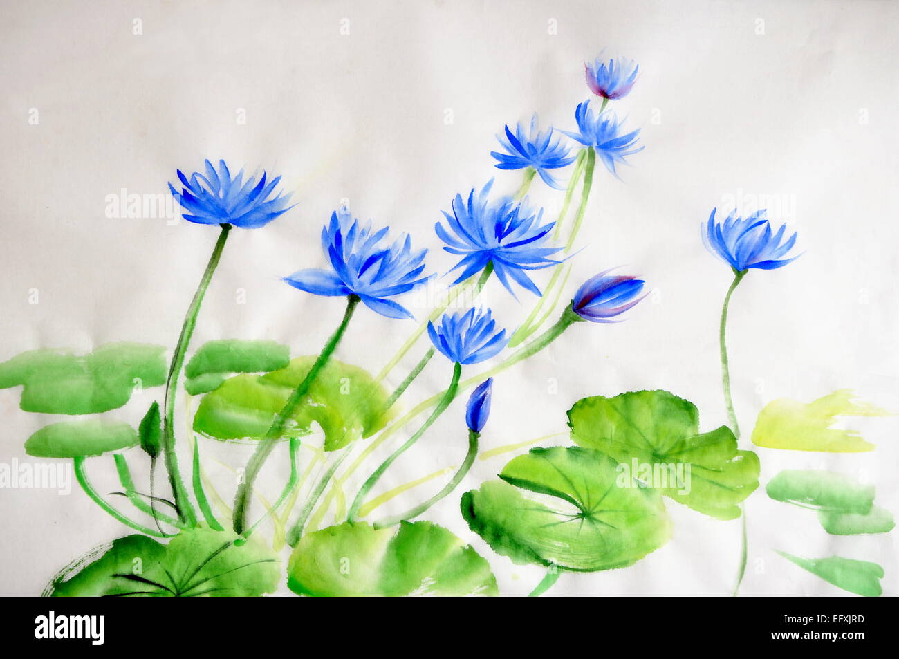 Original Art Watercolor Painting Lotus Stock Photos Original Art