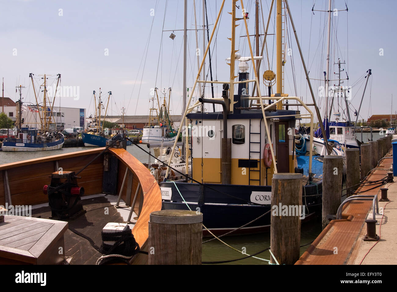 Fishing cutters in the harbor of Buesum, Dithmarschen district, Schleswig-Holstein, North Sea, Germany, Europe Stock Photo