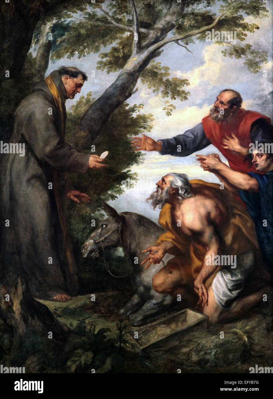 Anton van Dyck.1599-1641.The Miracle of the mule or Miracle of St. Anthony of Padua. - Stock Image