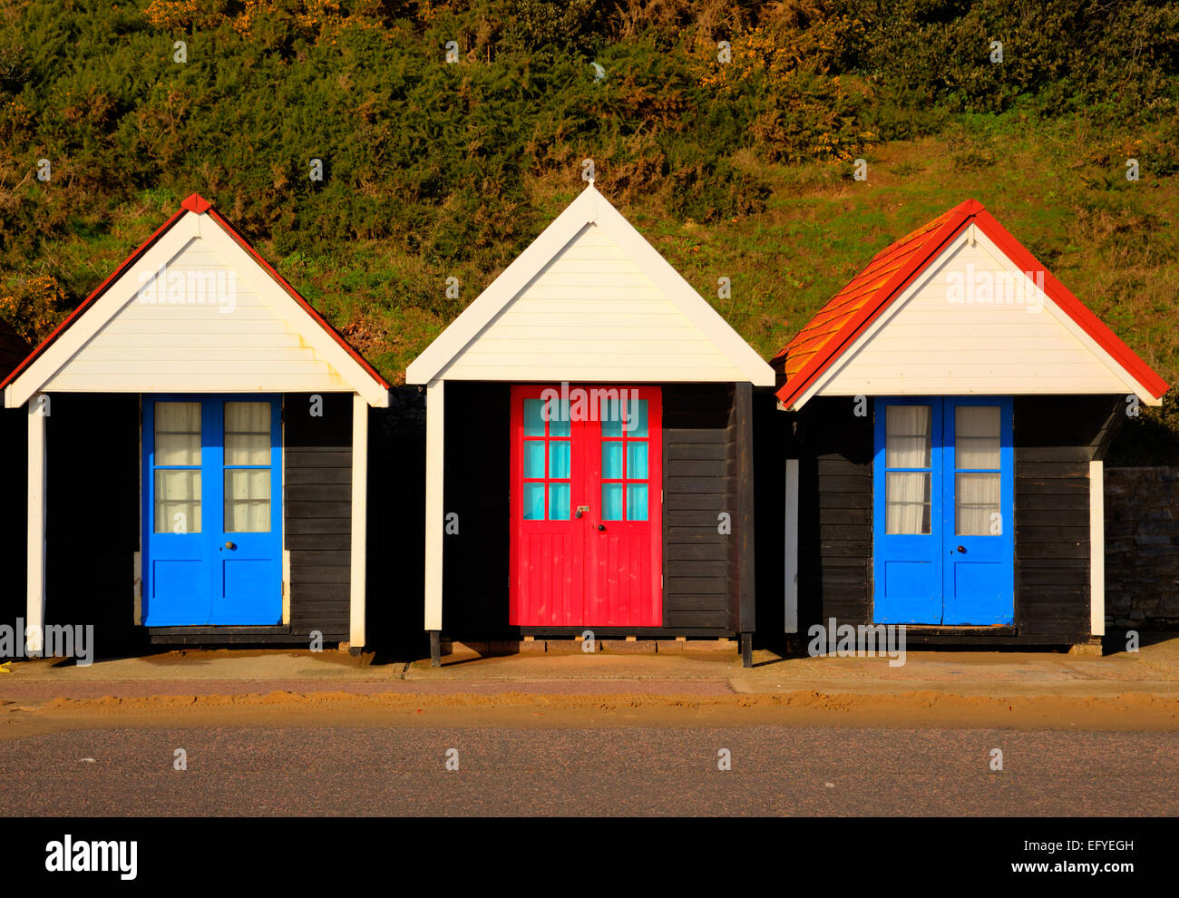Three colourful beach huts with blue and red doors in a row traditional English structure and shelter found at the - Stock Image