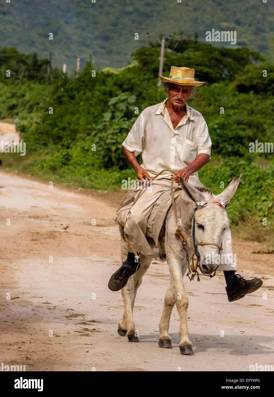 Elderly Cuban farmer on muleback, Valle de los Ingenios, Trinidad, Sancti Spiritus Province, Cuba - Stock Image