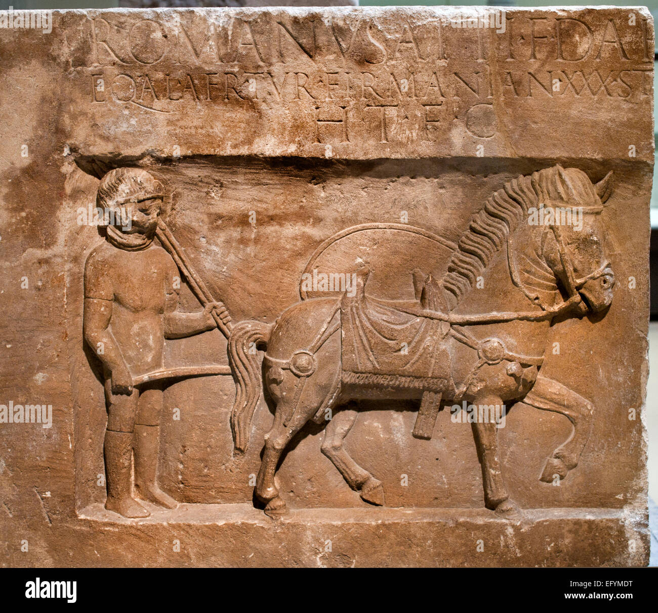 Grave stone of the cavalryman Lucius Romanus, 80-90 AD Roman Germanic Museum Cologne Germany - Stock Image