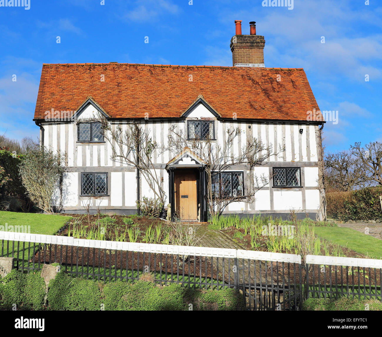 Traditional whitewashed Timber Framed English Village Cottage and garden - Stock Image