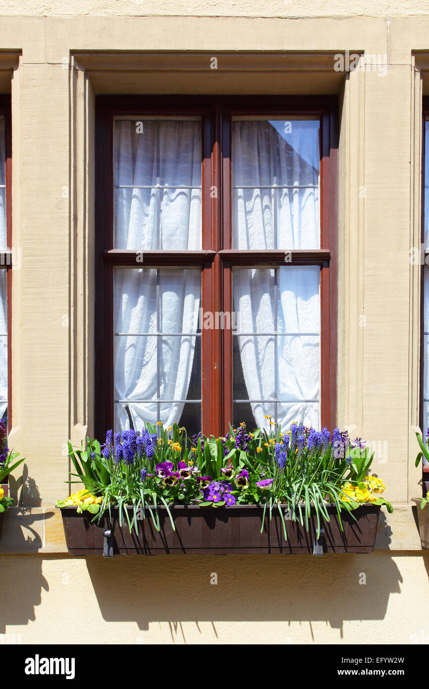 Window of old house with flowers, Germany - Stock Image