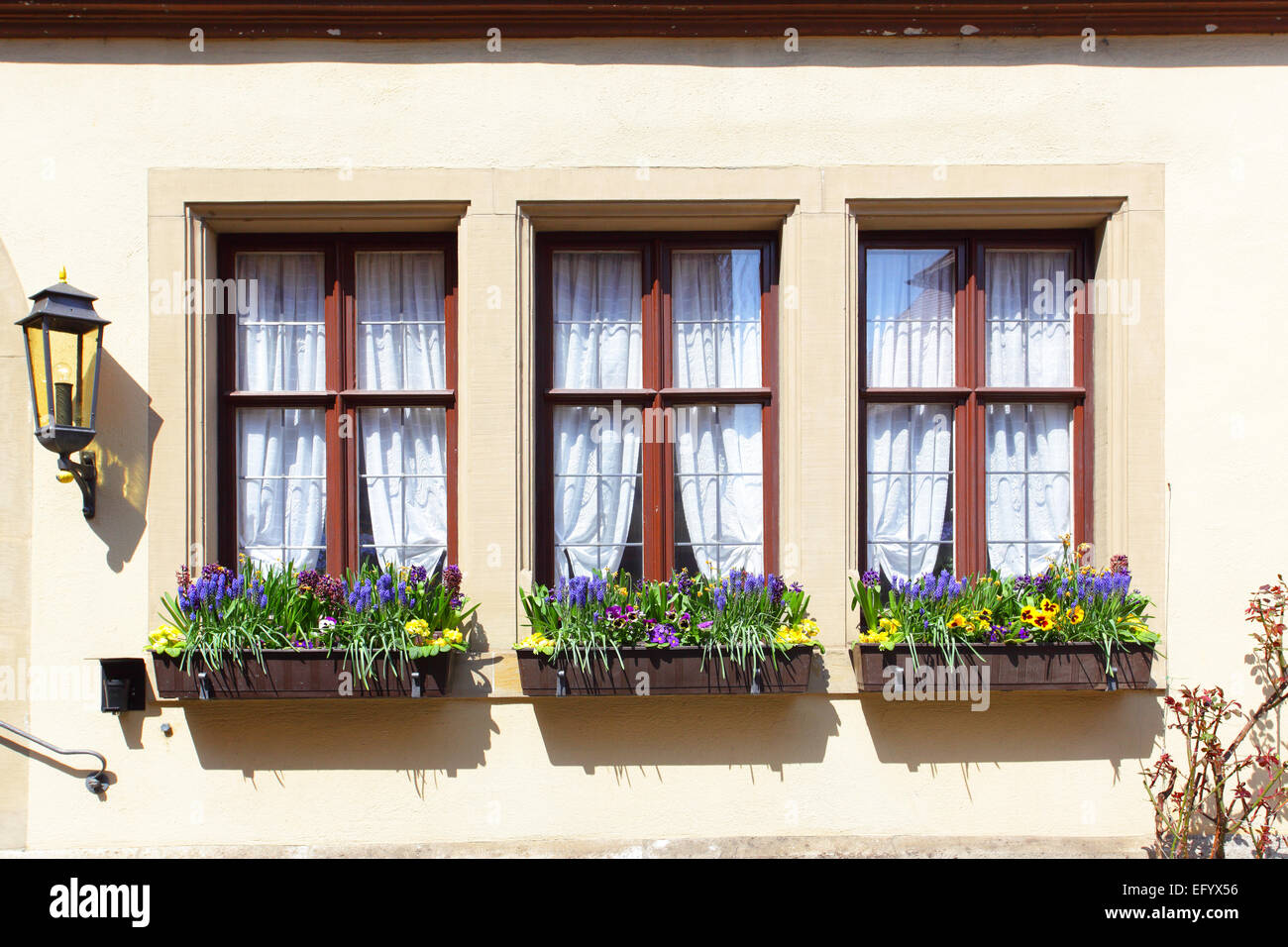 Windows of old house with flowers, Germany - Stock Image