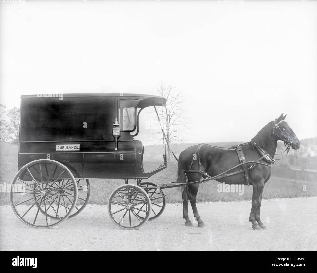 Antique c1900 photograph, horse-drawn ambulance wagon