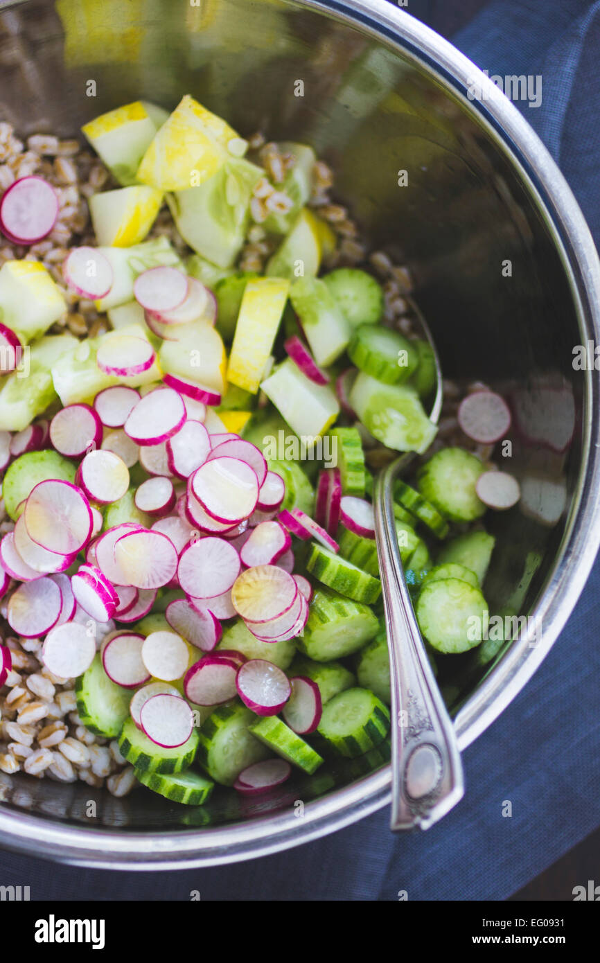 Farro salad with cucumber, radish and dill, being mixed in a mixing bowl. - Stock Image