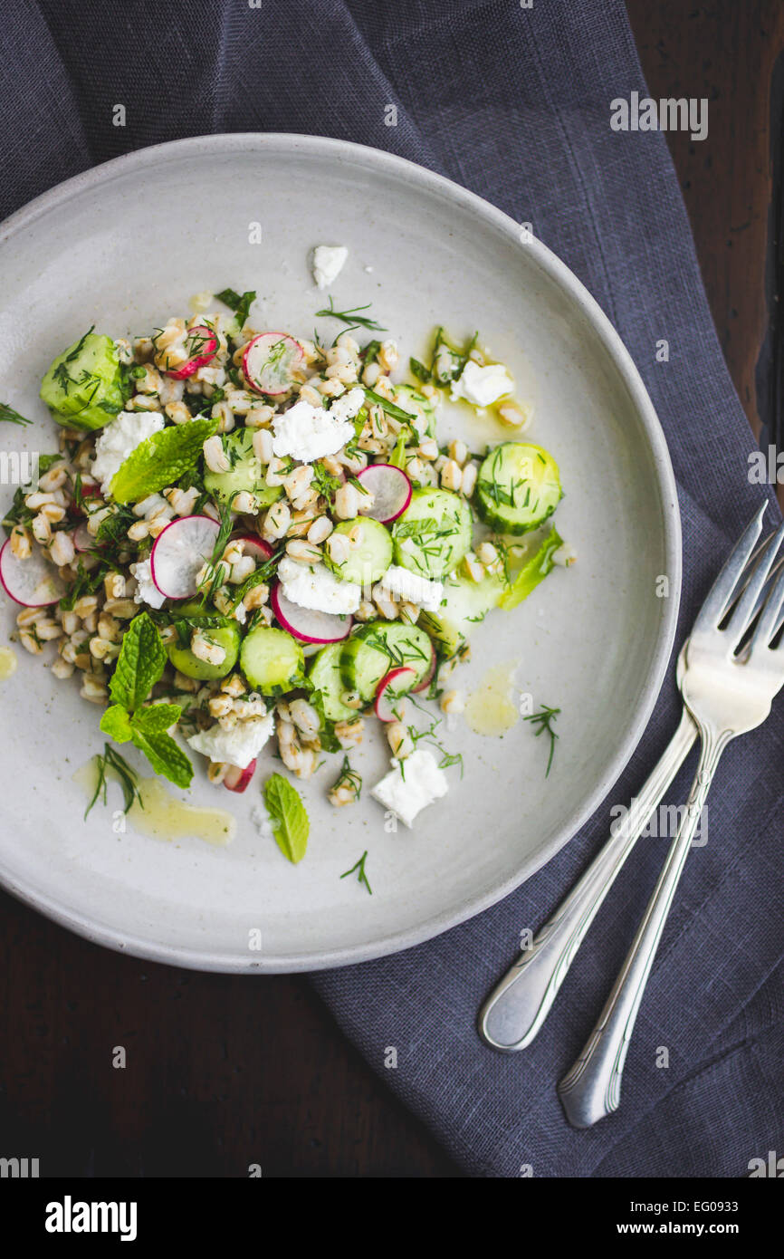 Farro salad with feta, cucumber, radish and dill, on a white plate. - Stock Image