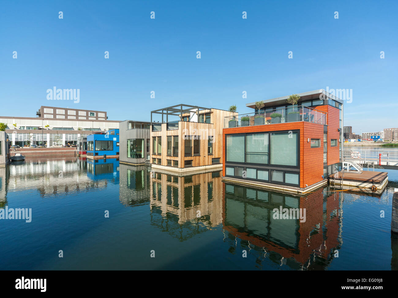 Floating houses homes modern houseboats house boats water villas in Amsterdam IJburg Yburg district. Rising sea - Stock Image