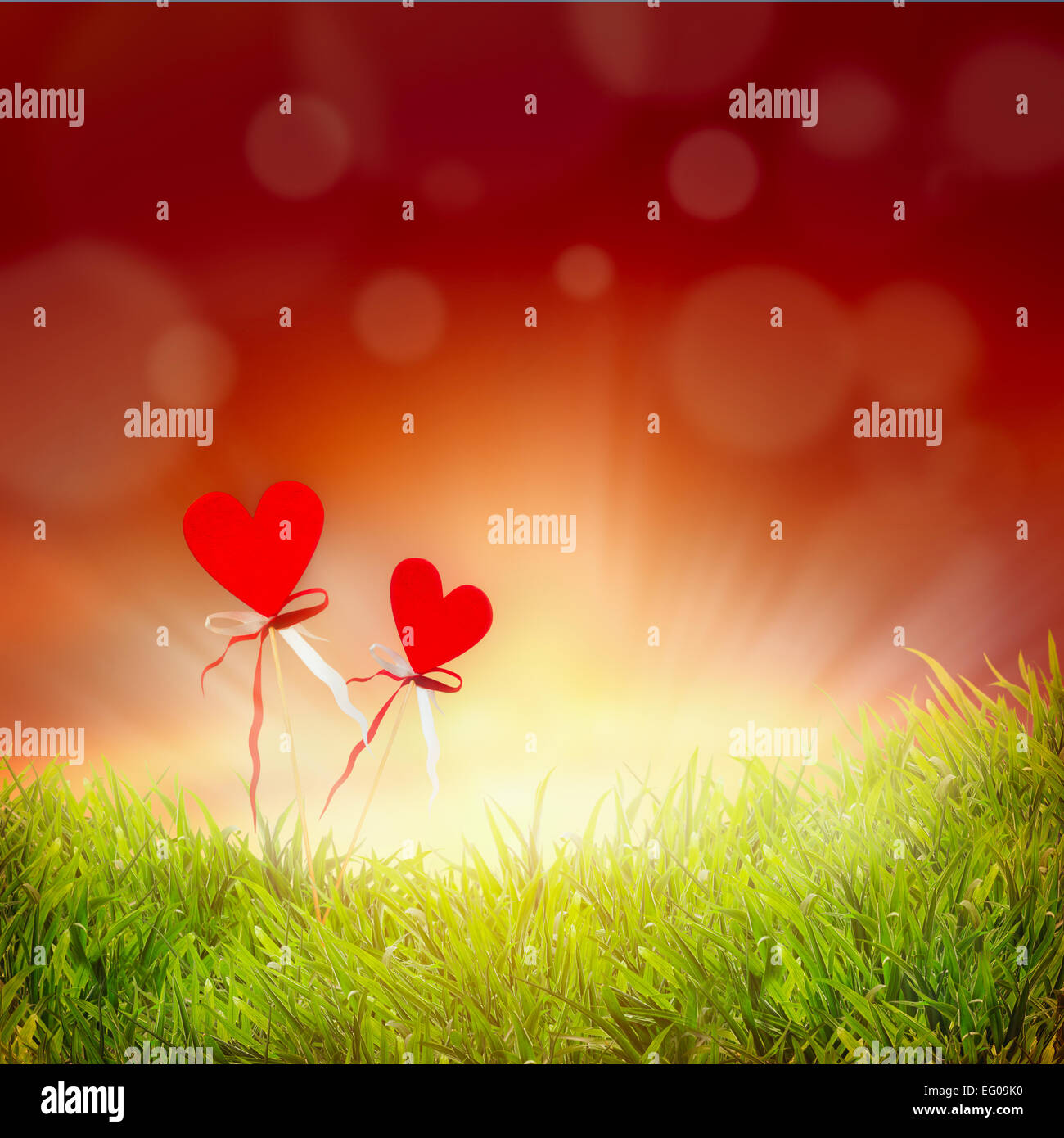 Valentines Day Background With Two Hearts Grass And Red Sky With