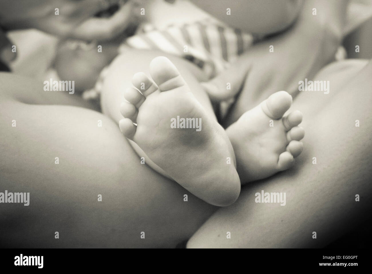 Baby and parent, close-up of baby's feet - Stock Image