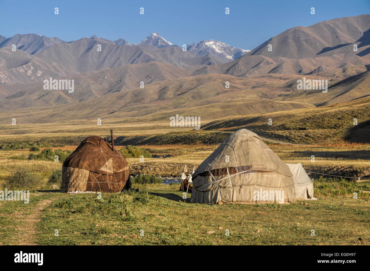 Nomadic settlements with yurts on green grasslands in Kyrgyzstan - Stock Image