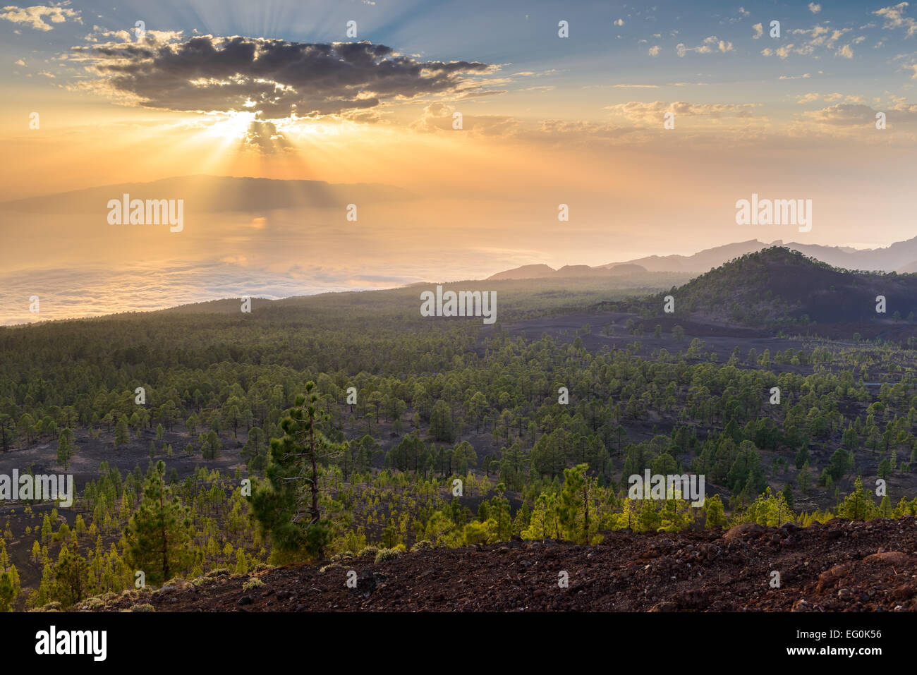 Spain, Canary Islands, Tenerife, Fascinating volcanic landscape - Stock Image
