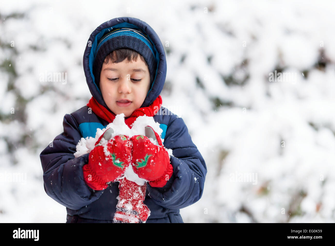 Bulgaria, Sofia, Young boy (4-5) holding snow - Stock Image