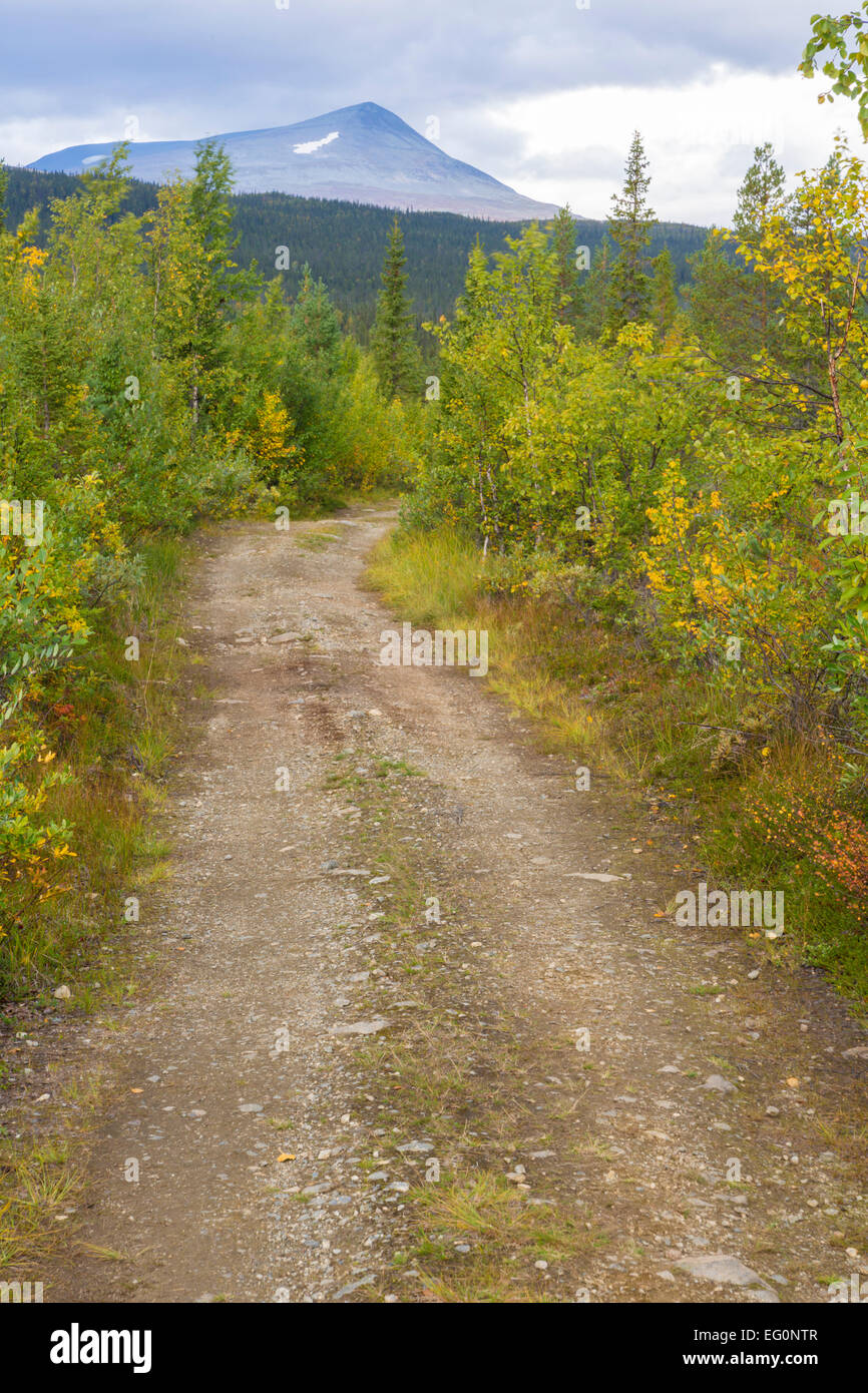 Forest road with mountain in background and trees in the side in autumn colors - Stock Image