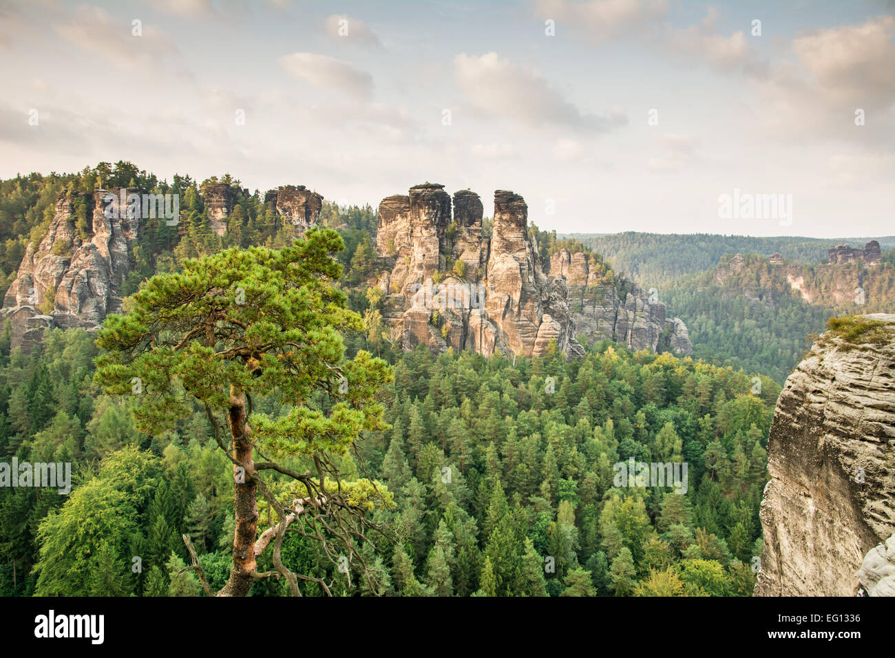 The sandstone mountains of the Bastei in Saxony (Germany) - Stock Image
