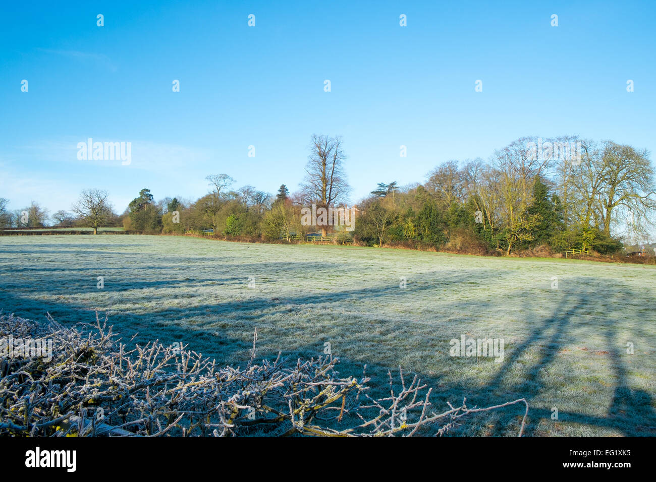 derbyshire countryside near Shottle, on a winters morning with frost on the ground,derbyshire,england - Stock Image