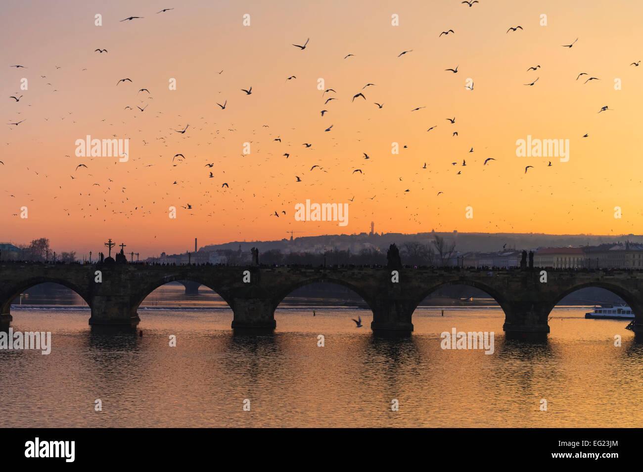 Charles Bridge - Stock Image