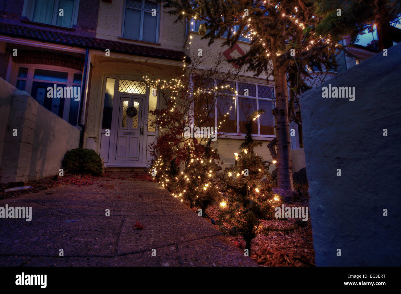 a garden decorated with small Christmas trees and lights Stock Photo