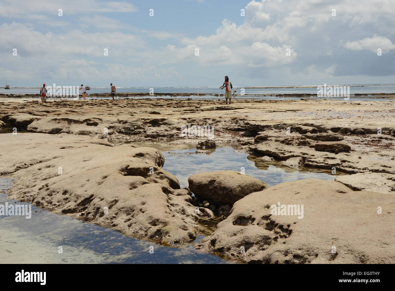 Coral reef at turtle bay Watamu in Kenya - Stock Image