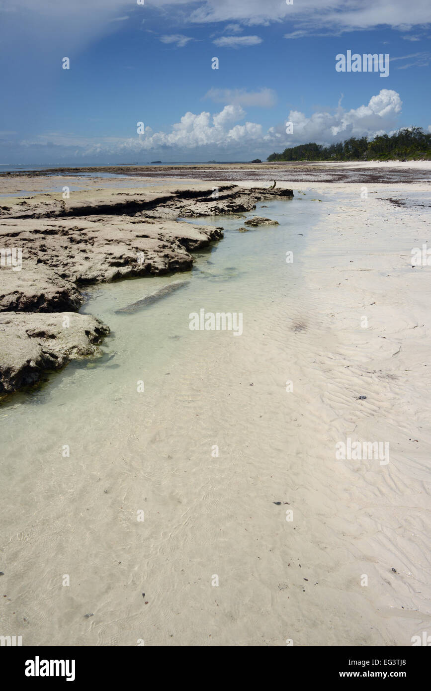 The edge of the coral reef with the tide out at Turtle Bay near Watamu in Kenya, East Africa - Stock Image