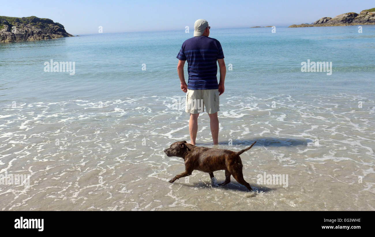 A staffie and man enjoy the quiet  Kilvickeon Beach on the Ross of Mull Scotland - Stock Image