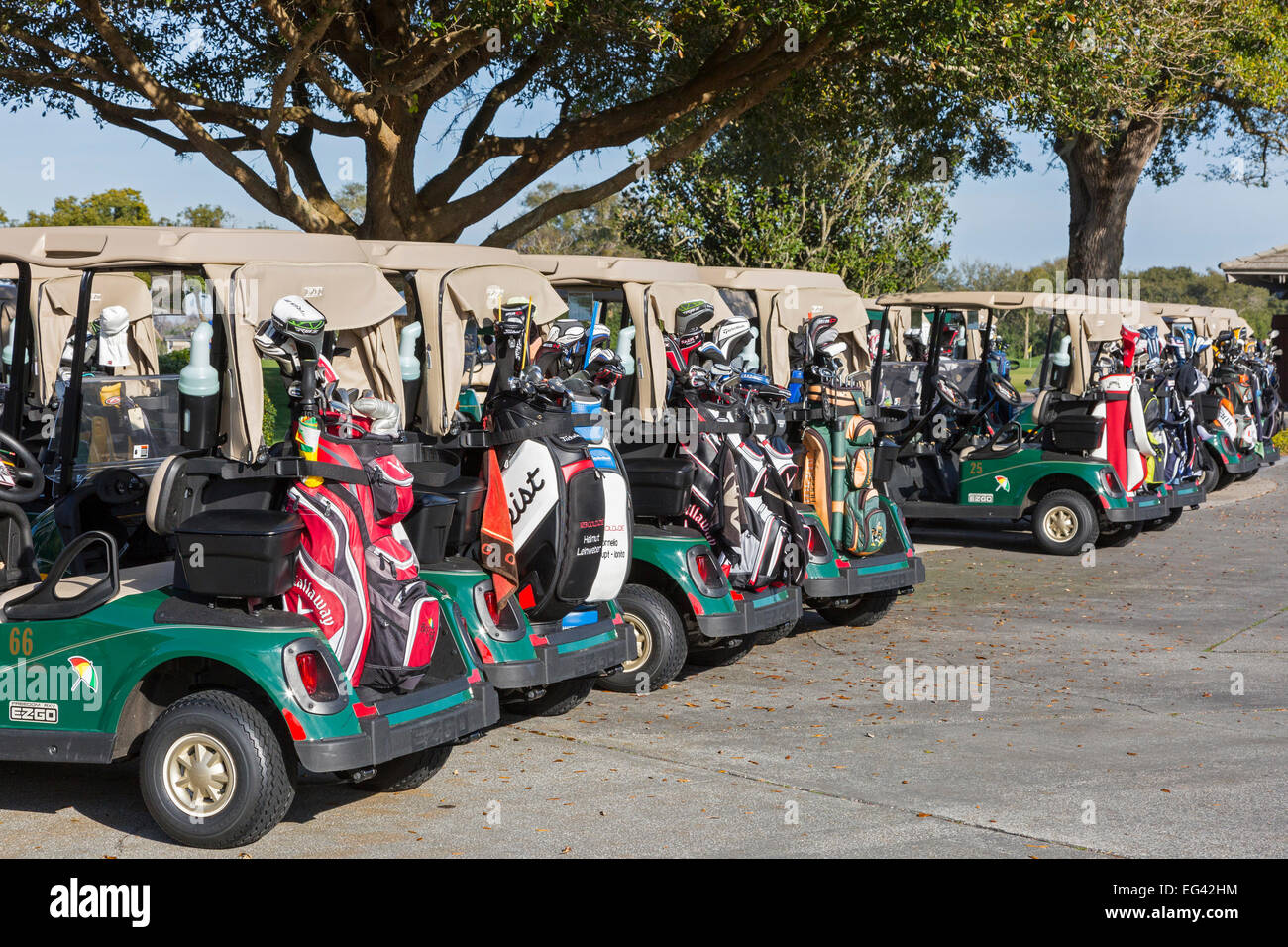 Golf buggies lined up with golf clubs at the first tee of Arnold Palmer's Bay Hill Golf Club, Orlando, Florida, - Stock Image