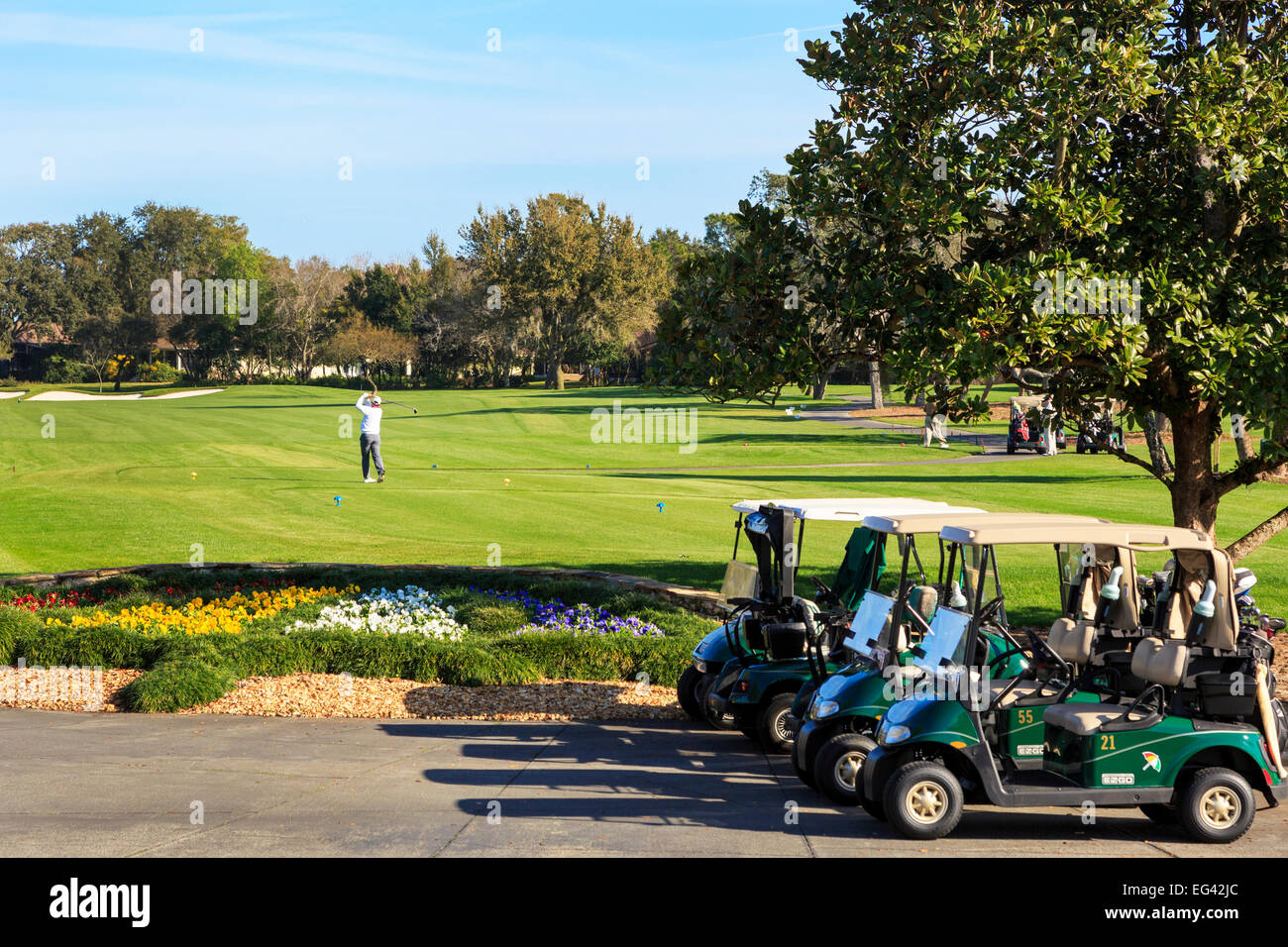 Golfer on the first tee at Arnold Palmer's Bay Hill Golf Course, Orlando, Florida, America - Stock Image