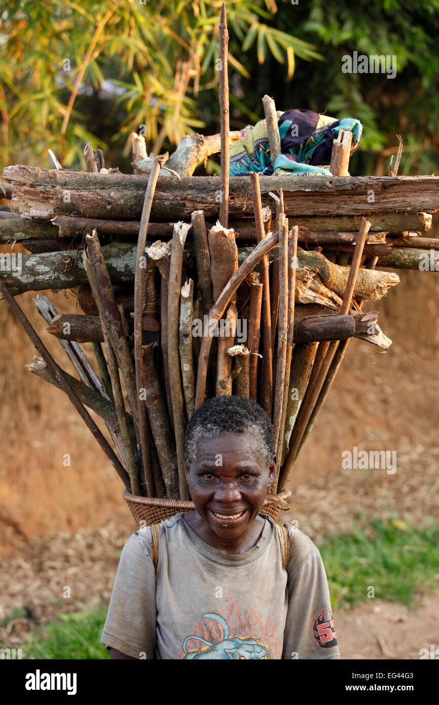 Old woman with firewood on her back, Kasongo Lunda, Kawangoregion, Congo - Stock Image
