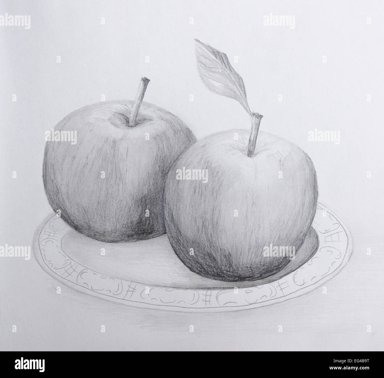 Pencil drawing of two apples on a plate grayscale on cartridge paper