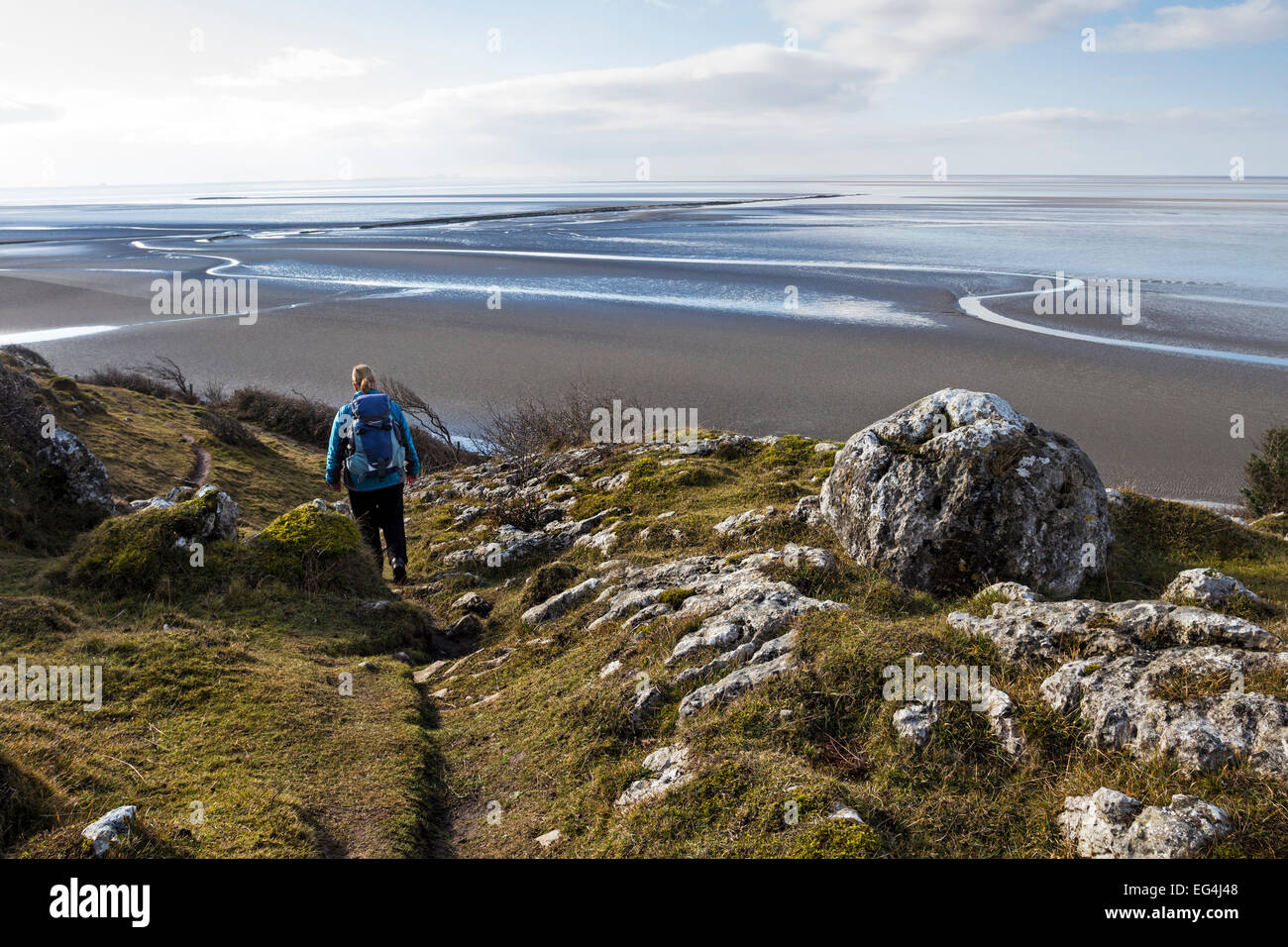 Morecambe Bay Nature Reserve From Jack Scout, Silverdale Lancashire UK - Stock Image