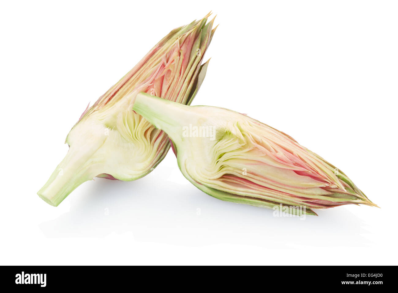 Artichoke slices - Stock Image