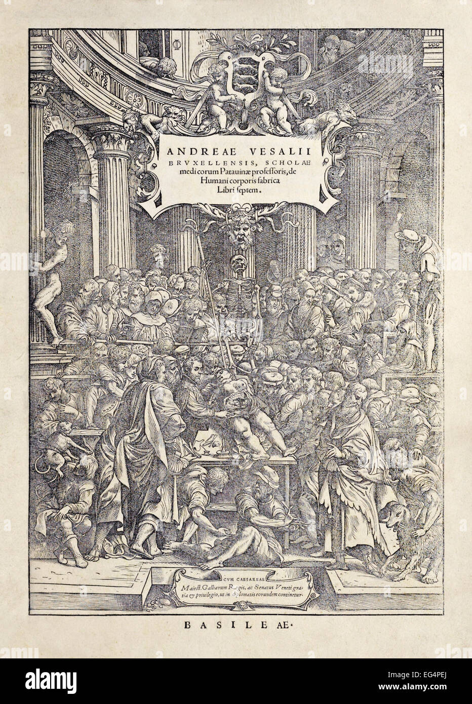 "Frontispiece from ""De humani corporis fabrica libri septem"" by Andreas  Vesalius (1514-1564) published in 1543. Shown Vesalius dissecting a female  corpse ..."
