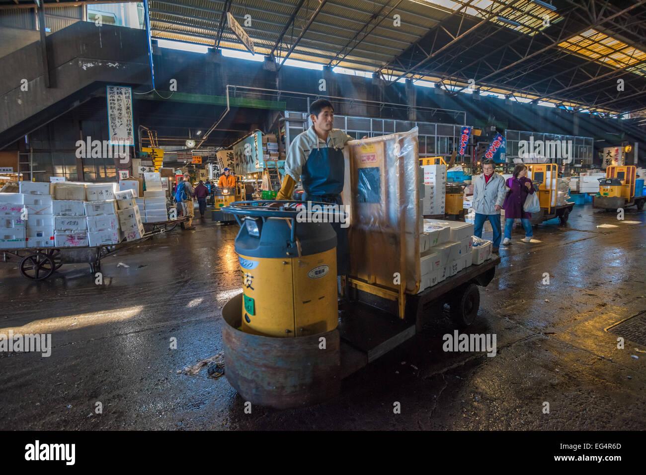 TOKYO, JAPAN - November, 22, 2014: A man driving taretto, motorized cargo cart, at Tsukiji, the biggest fish and - Stock Image