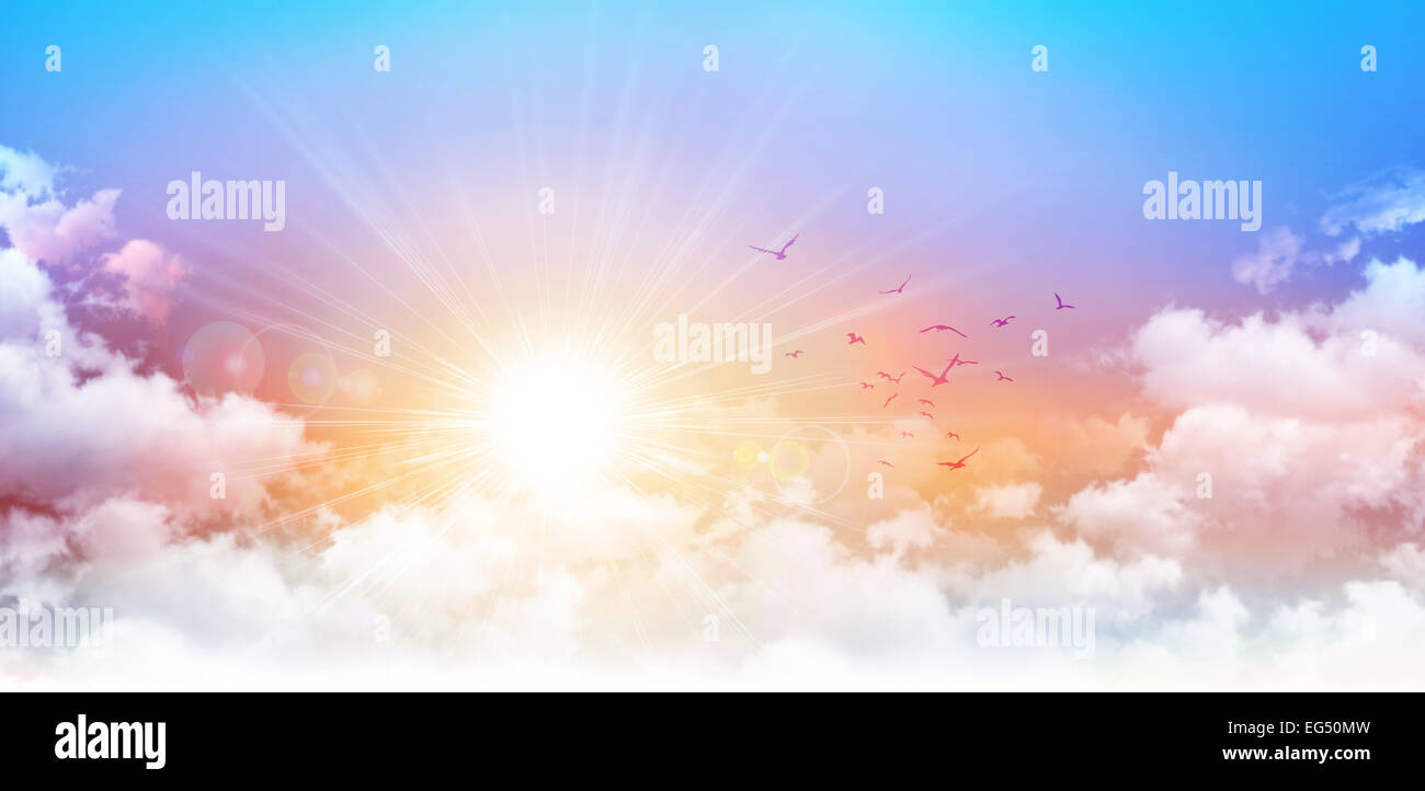 High resolution morning sky background. Rising sun and birds breaking through white clouds - Stock Image