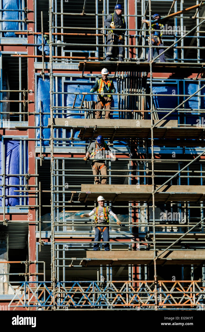 Builders working on scaffolding on a new steel framed building. - Stock Image