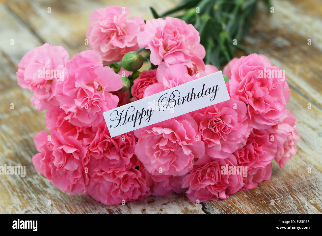 Happy birthday card pink carnation stock photos happy birthday happy birthday card with pink carnation flowers stock image izmirmasajfo