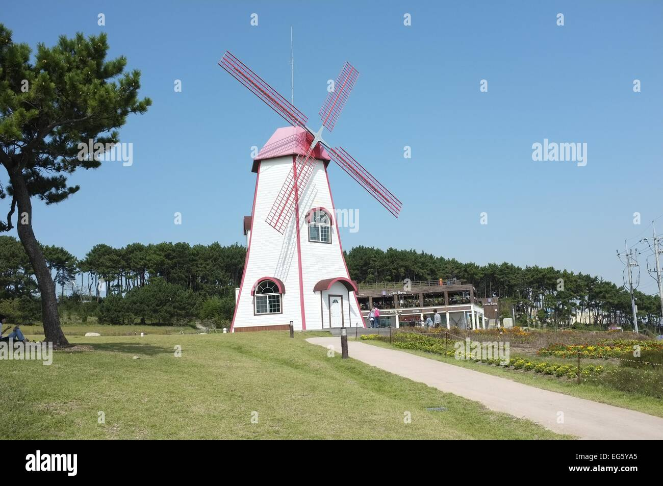 Windmill with tree and blue sky - Stock Image