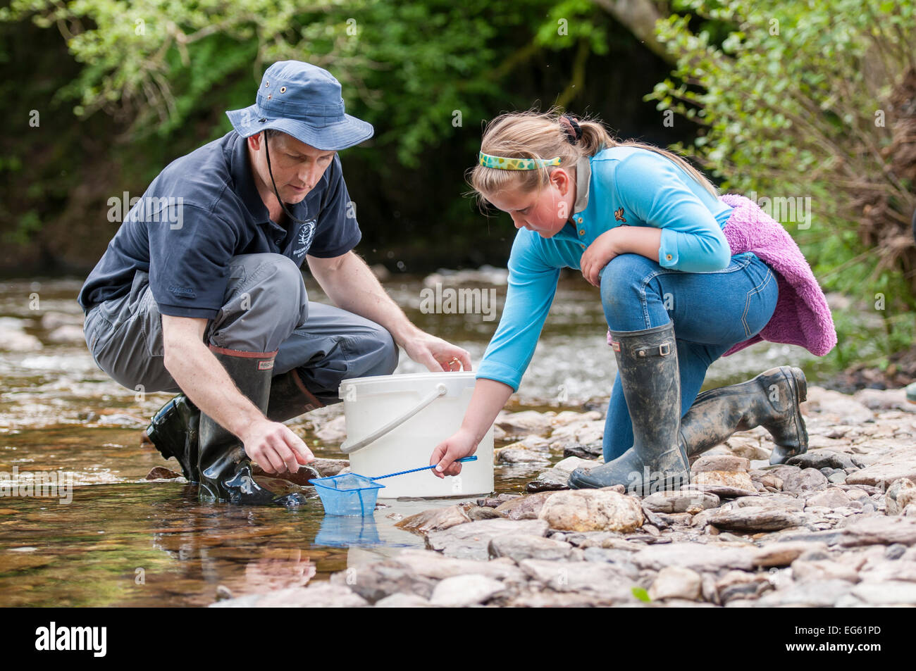 School child releases salmon fry in the River Haddeo, with Westcountry Rivers Trust (WRT) warden. Bury, Exmoor National Stock Photo