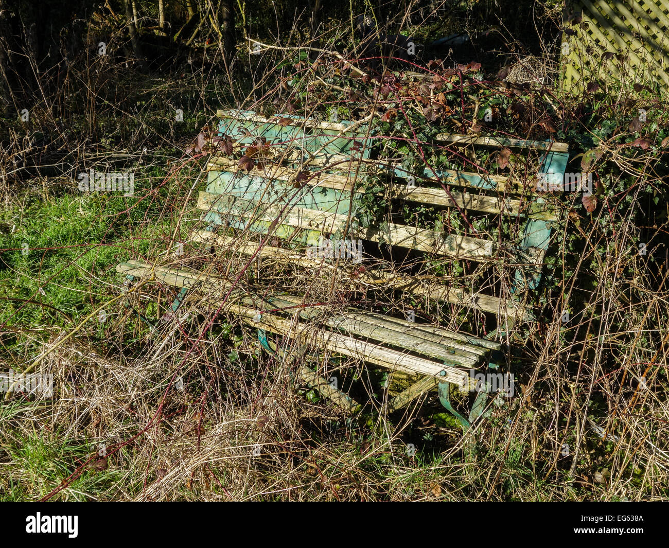 The Forgotten Garden Bench - Stock Image
