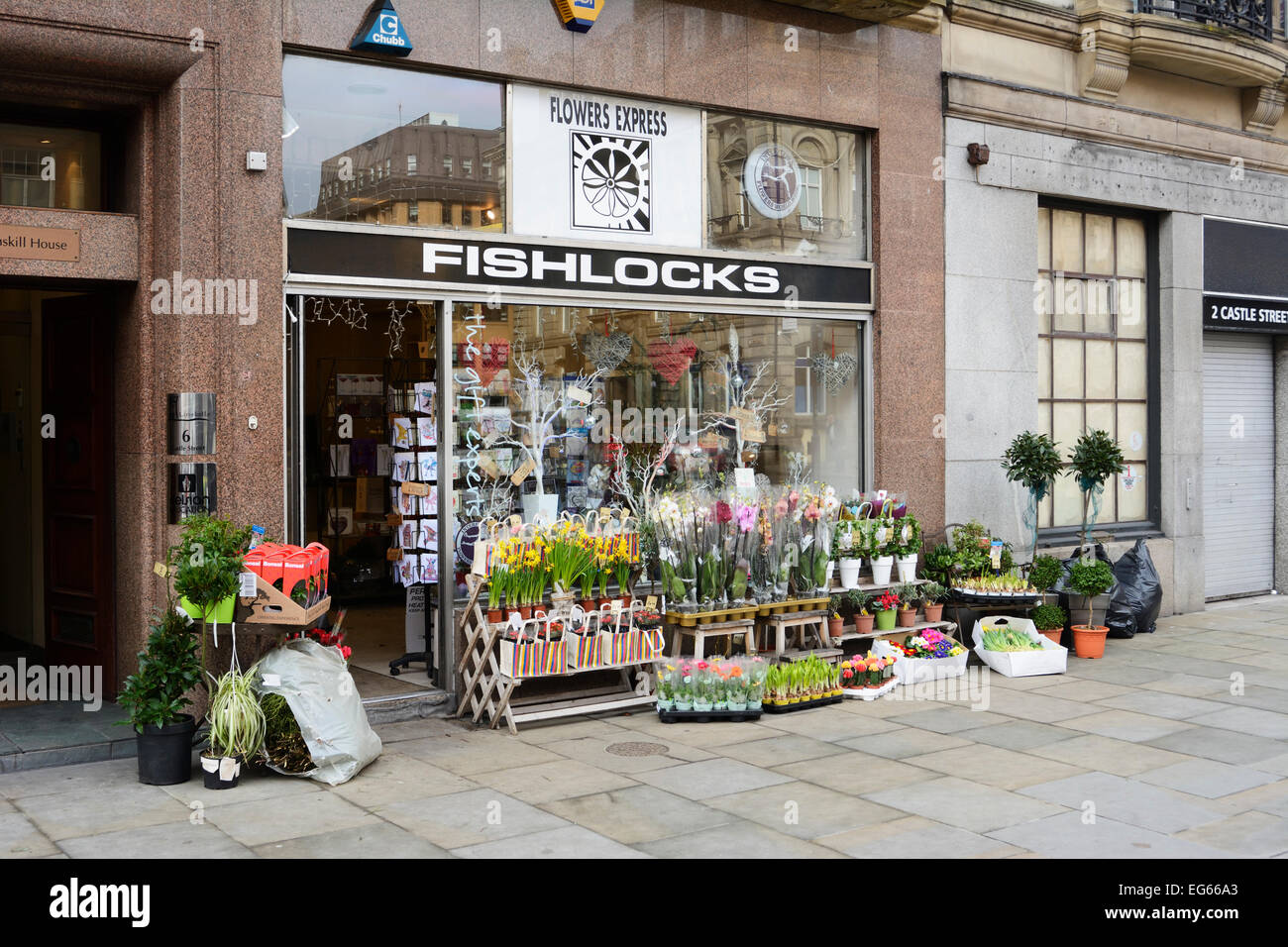 Springtime Or The Florists Stock Photos Springtime Or The Florists